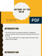 Anatomy of the Skin