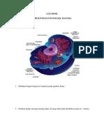 LOG BOOK struktur sel mausia.docx