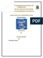Noradrenalina (1).docx