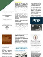 trabajo Catedra Faria 1-2.docx