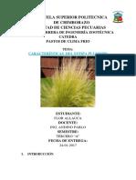 informe de pastosparcelas.docx