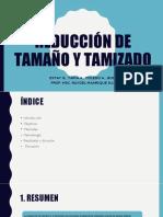 REDUCCION DE TAMAÑO Y TAMIZADO.pptx