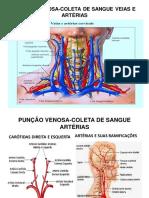 Apresentação30.pdf
