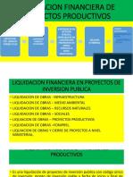 Liquidacion Financiera de Proyectos Productivos - 2019
