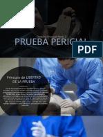 PRUEBA PERICIAL-2.pptx