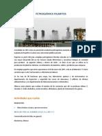 PETROQUÍMICA-PAJARITOS.docx