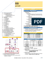 [Clin Path] Wbc Disorder Dr. Ang