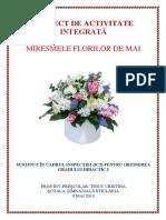 PROIECT INSPECTIE GRAD I.docx
