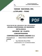 docdownloader.com_informe-de-practicas-de-richard-super.pdf