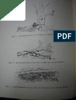 Libro Del Cabo (1)
