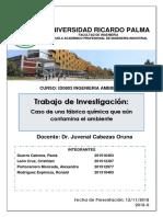 TRABAJO FINAL AMBIENTAL.docx