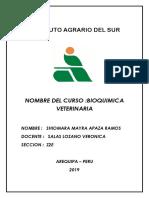 INSTITUTO AGRARIO DEL SUR (Autoguardado).docx