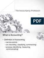 Chapter 1 - The Accountancy Profession
