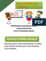 Kesehatan Reproduksi Remaja Revisi