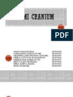 Anatomi Cranium