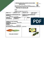 proyecto escolar (CLUB) 2017-2018.docx