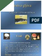 Gljive.pdf