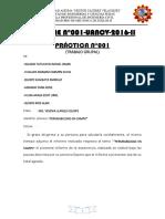 INFORME  PERMEABILIDAD EN CAMPO.docx