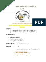 INFORME ZUMO DE TANGELO.docx