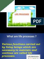LIFE PROCESSES.pptx