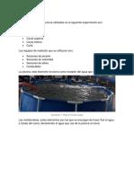 EXPERIMENTO FLUIDOS.docx