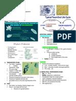 UNICELLULAR-PARASITES.docx