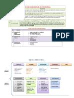 PRINCIPIOS PENAL IMPRIMIR.docx