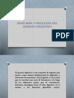 Anatomía y Fisiología Del Aparato Digestivo.pptx a.c.j (1)