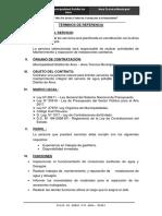 TDR GASFITERO.docx