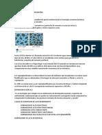 HORMIGONES DE ALTO DESEMPEÑO.docx