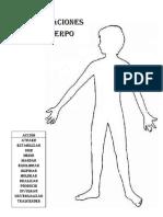 Articulaciones del cuerpo.docx