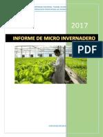 INFORME DE MICRO INVERNADERO