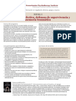 Desregulacion-afectiva-Nivel-1.pdf