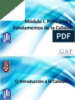 Modulo I Principios y Fundamentos de La Calidad v.03