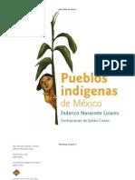 Pueblos Indigenas Mexico Navarrete c1
