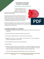 VÍAS DE ABSORCIÓN DE LOS FÁRMACOS (4).docx