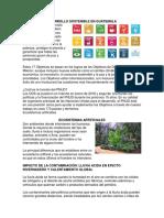 Medidas Del Desarrollo Sostenible en Guatemala