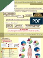 8 - Caracteristicas Gerais da Microbiota do Homem 01-2017 -Parte 2(1).pdf