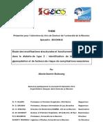 2014lare0017_DGuerin.pdf
