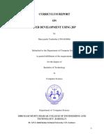 Cirriculum Report