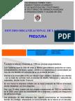 Estudio Organizacional Frescura-1