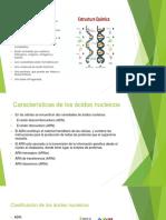 BIOMOLECULA ACIDOS NUCLEICOS