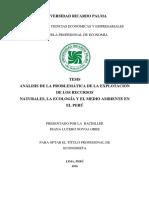 ANÁLISIS DE LA PROBLEMÁTICA DE LA EXPLOTACIÓN.pdf