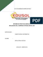 Informe Final Practicas Profesionales