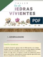 Presentacion Lithops PDF