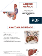 Anatomia....Absceso Amebiano