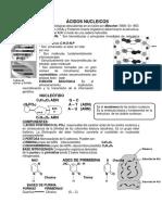 Acidos Nucleicos 15 de Abril