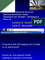7_L.Derchi-C.E.Neumaier.pdf