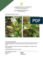 Form 01C Natural Resources - Plants 2019.docx