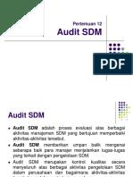 p12 Audit Sdm
